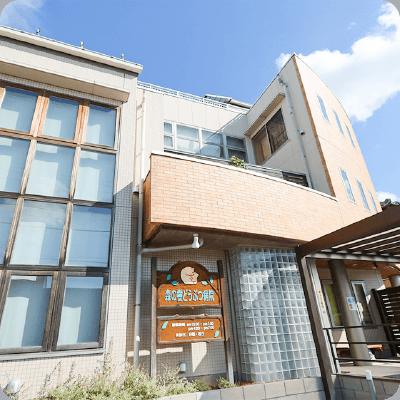 埼玉県熊谷市の動物病院|森の樹どうぶつ病院 本院