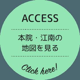 埼玉県熊谷市の動物病院|森の樹どうぶつ病院